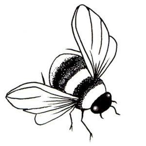 Sello Acrílico Bee Lavinia Stamps | Marakiscrap.com