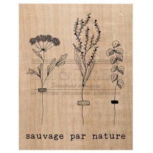 Sello de Madera Sauvage par Nature Chou Flowers | Marakiscrap.com