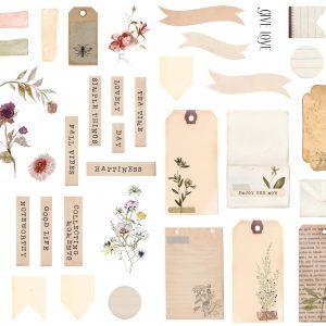 diecuts herbarium de studio forty 1 | marakiscrap